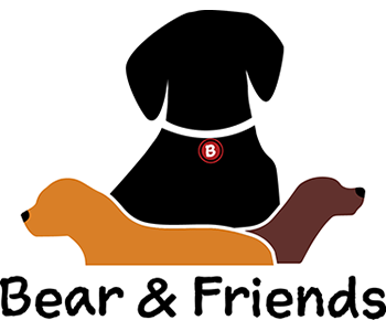 Bear and Friends Rescue