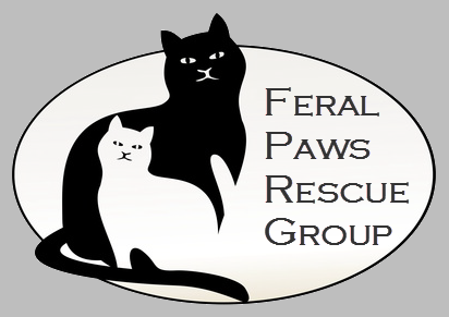 Feral Paws
